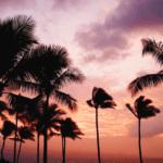 家族でハワイ!!ホノルル行きビジネスクラス特典航空券を発券