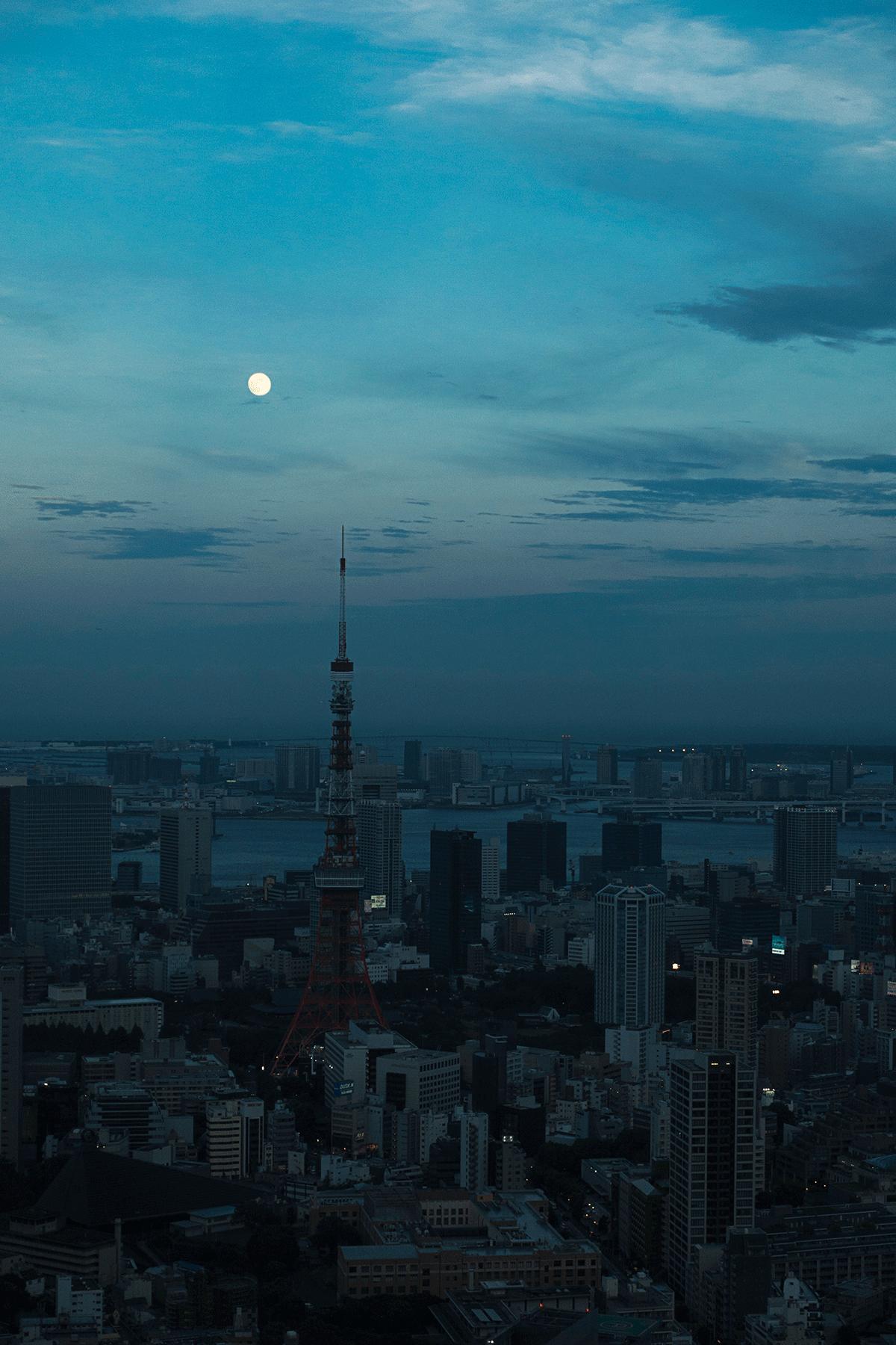 ザ・リッツ・カールトン東京からの東京タワー