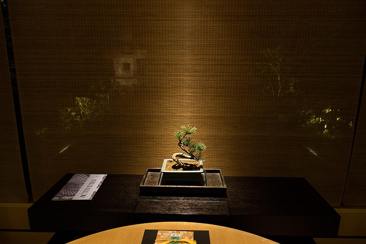 デラックスガーデンルームの盆栽