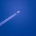 【バイマイル】ANAマイルを「BUY AIRLINE MILES」で購入する方法を解説